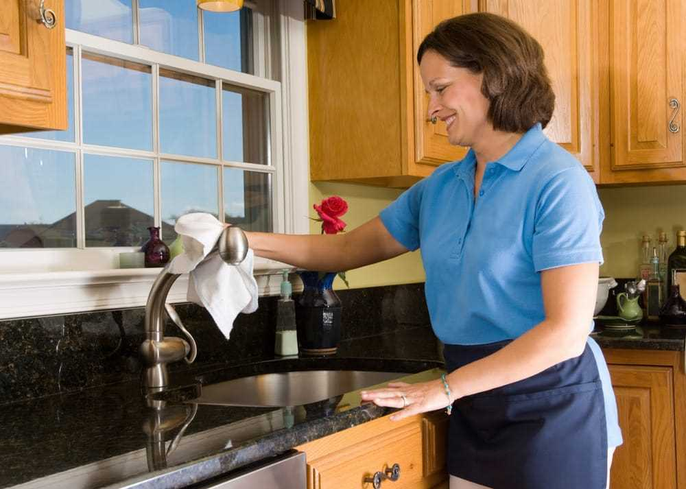 Domestic Cleaners in London