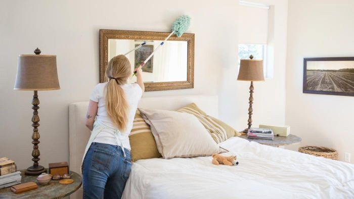 Domestic Cleaning service